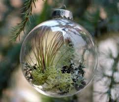 everyday living tree ornaments