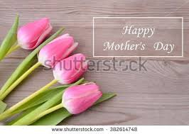 Flowers For Mum - mothers day background daisy mom red stock photo 410157223