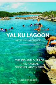 1000 images about vacation sites on pinterest caye caulker