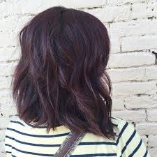 best 25 dark mahogany hair ideas on pinterest mahogany hair