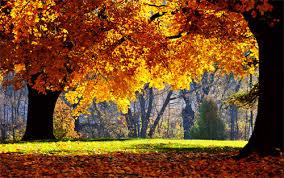 30 absolutely spectacular autumn wallpaper desktop