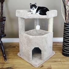 black friday cat tree deals amazon cat supplies shop the best deals for oct 2017 overstock com