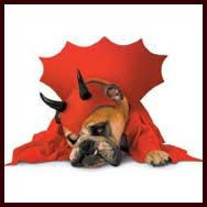 Halloween Costumes Bulldogs Bulldog Costumes Clothes Halloween Dog Costumes