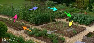 Permaculture Vegetable Garden Layout Crop Rotation In Your Vegetable Garden