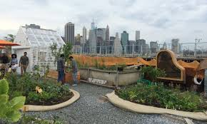 Urban Gardening Magazine Roots By Robots And More Smart Magazine