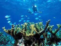 Florida national parks images National parks in florida travel channel jpeg