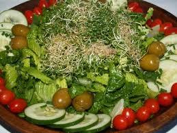 atkins 14 day diet plan livestrong com