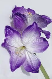Silk Amaryllis Flowers - shop artificial stem of 2 fresh touch purple tipped amaryllis