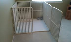 flooring outside dog kennel flooring ideas floor 1024x768