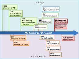 by p d cancer immunotherapies targeting the pd 1 signaling pathway