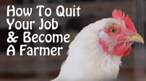 quit your job and farm part 1 10 small farm ideas from