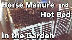horse manure and bed in the garden youtube