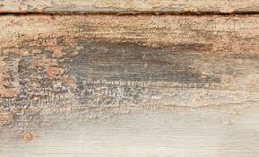 old wooden background texture image www myfreetextures com