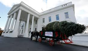 white house tree theme 2016white ornaments
