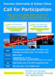 explanation section for dalian internship promotion office for