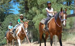 California Flag Horse California Summer Sleepaway Camp For Kids Walton U0027s Grizzly Lodge