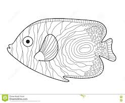 fish sketch doodle style hand drawing fish coloring book vector