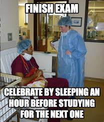 Student Meme - savma s the vet gazette main the overworked veterinary student meme