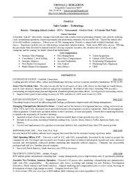 exles of hr resumes human resources resume template home improvement sales resume