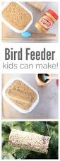 crafts diy bird feeder