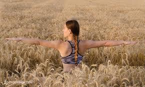thanksgiving a gratitude meditation
