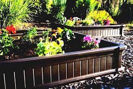 Rose Garden Layout by Ergonomic Vegetable Garden Design Herb In Raised Home Bed Plans On