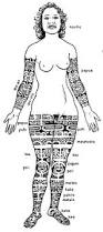 dictionary of polynesian tattoo symbols meanings of patterns