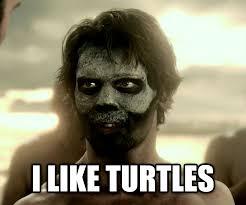 I Like Turtles Meme - livememe com 300 guy