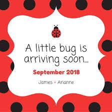 ladybug baby shower ladybug baby shower social media graphic templates by canva
