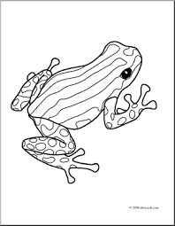 clip art frogs pasco poison dart frog coloring preview