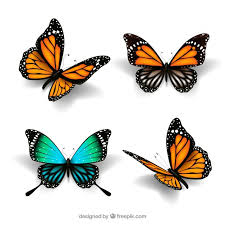 butterflies in style vector free