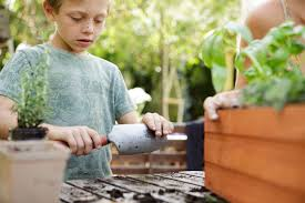 Babysitting Jobs In Memphis Tn Age Appropriate Jobs For 9 Year Olds