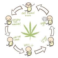 Memes De Marihuanos - memes marihuana y mujeres megapost im磧genes taringa