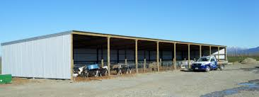 How To Build A Pole Shed Nz by Farm Sheds