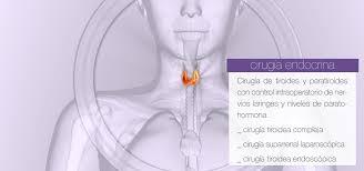 laparoscopic surgery archivos innovasurgery cirugía