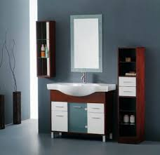 Amazing Designs For Bathroom Cabinets Images Home Decorating - Cabinet designs for bathrooms