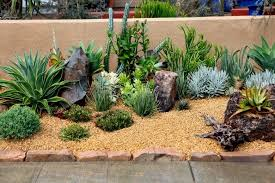brilliant different landscape designs desert rock garden design