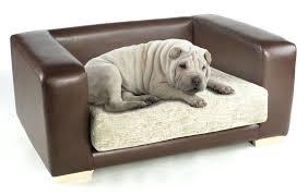 the dogs bed u2013 ru site