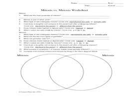mitosis vs meiosis worksheet worksheet resources for