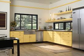 Kitchens With Yellow Cabinets Furniture Fascinating Aristokraft Cabinet Review Make Kitchen