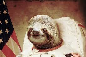 Astronaut Sloth Meme - the 25 greatest sloths the internet has ever seen