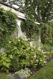 landscape ideas for a small front yard elegant best front yard