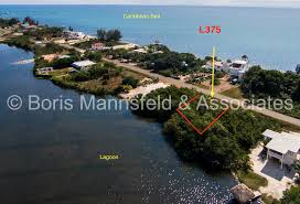 l375 plantation waterfront lot for sale placencia peninsula