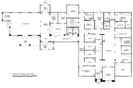 veterinary floor plan zoot pet hospital izzie animals hospital