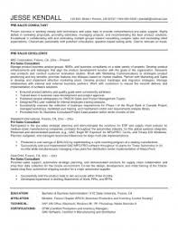 it consultant resume sales consultant resume image exles resume sle and