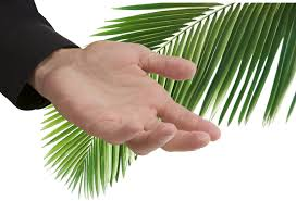 palms for palm sunday what are the most important palms of palm sunday palm sunday 2018