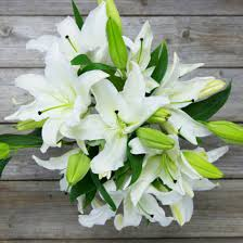 white lillies kindred spirit white bouquet the bouqs co