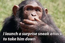 Ape Meme - i made a fucking d d meme album on imgur