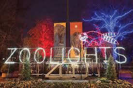national zoo christmas lights illuminating animals zoolights metro weekly