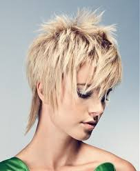 google short shaggy style hair cut 42 best hair cut ideas images on pinterest hairstyle short